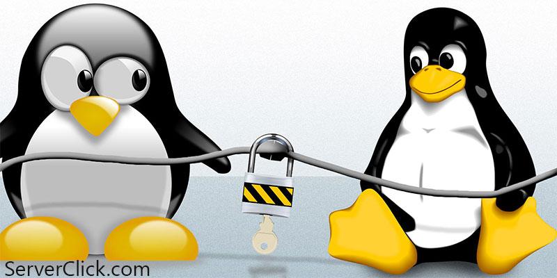 مزایای استفاده از هاست لینوکس داخلی